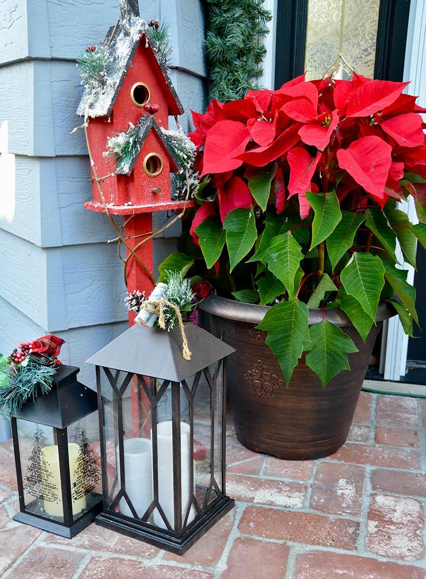 Decorare l'ingresso di casa con la stella di Natale e una lanterna.