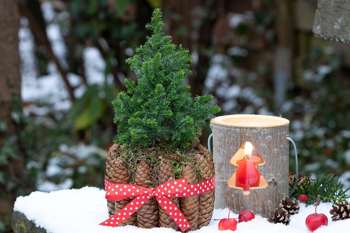 Addobbi Natalizi X Esterni.Addobbi Natalizi Per Esterno 20 Idee Per Un Natale Magico