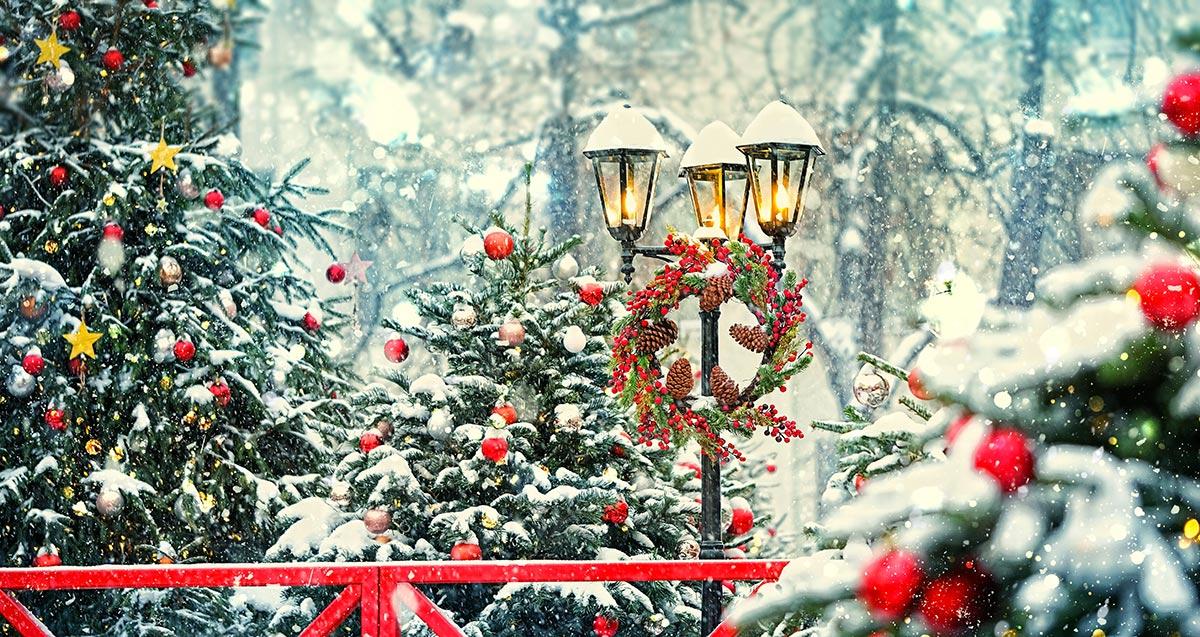 Addobbi natalizi per esterno.