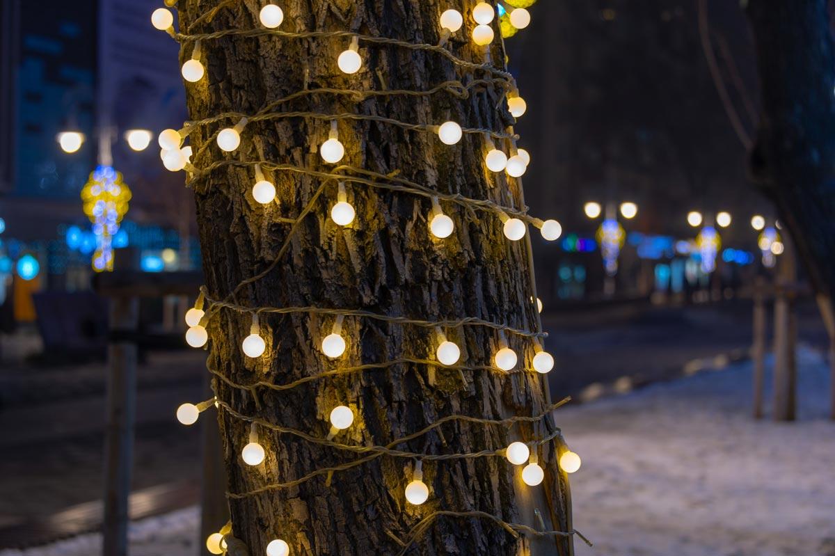 Albero in giardino decorato con luci di Natale.