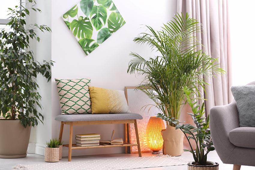 Salotto decorato con una bella pianta da interno, panchina con cuscini e un quadro con foglie.