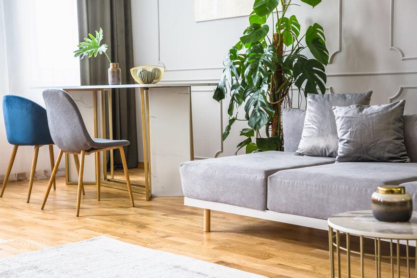 Soggiorno con pianta verde vicino al divano.