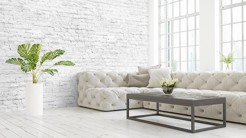 Salotto con divano ad angolo e vaso con pianta verde.