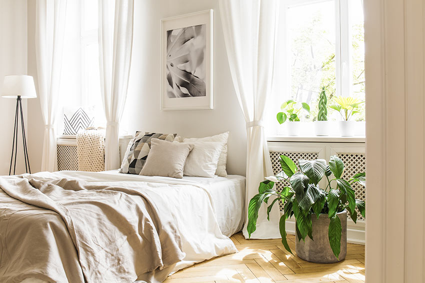 Camera da letto moderna decorata con una pianta da interno.