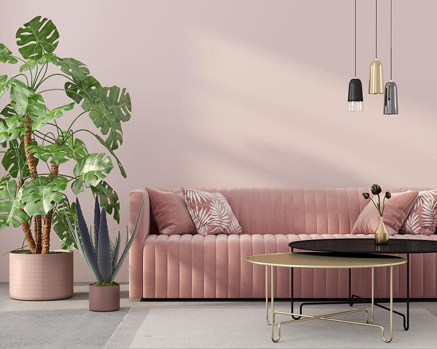Bel soggiorno con tonalità di rosa e una bella pianta da interno vicino al divano.