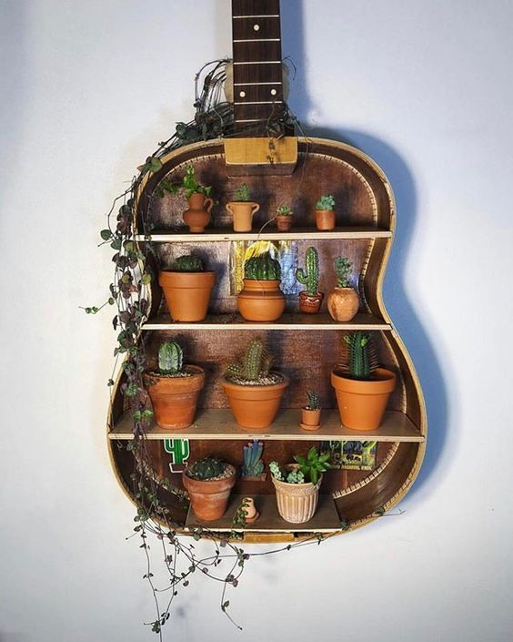 Vecchia chitarra con mensole interne e vasetti di fiori