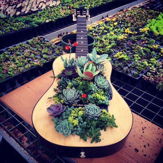 Riciclo creativo vecchia chitarra con piante grasse