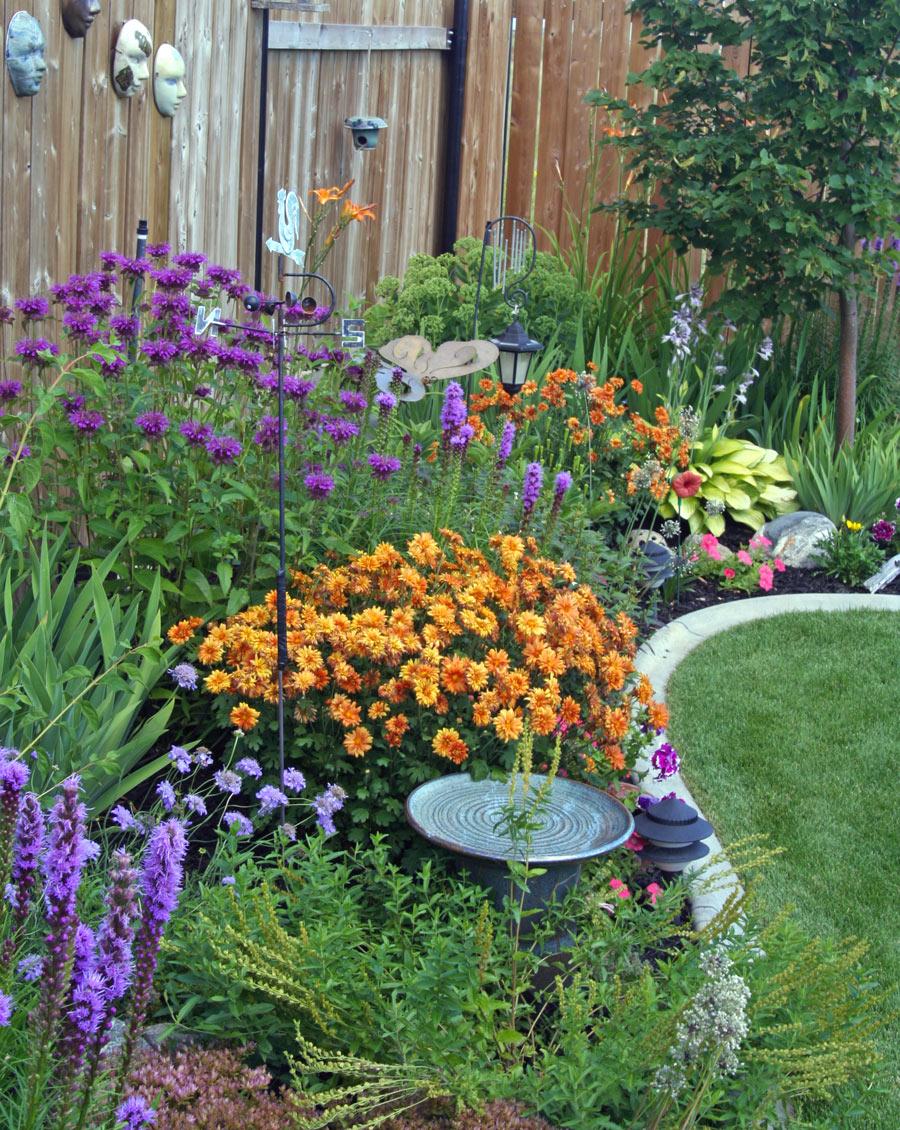 Bellissima aiuola da giardino