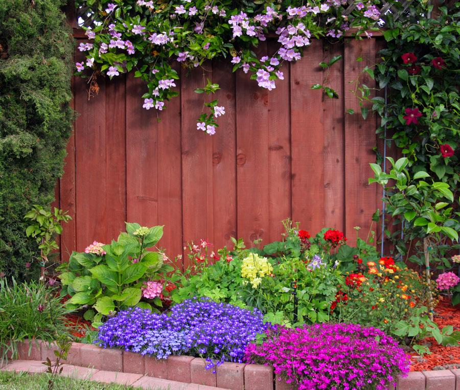 Bellissima aiuola di fiori con staccionata in mattonicini rossi.