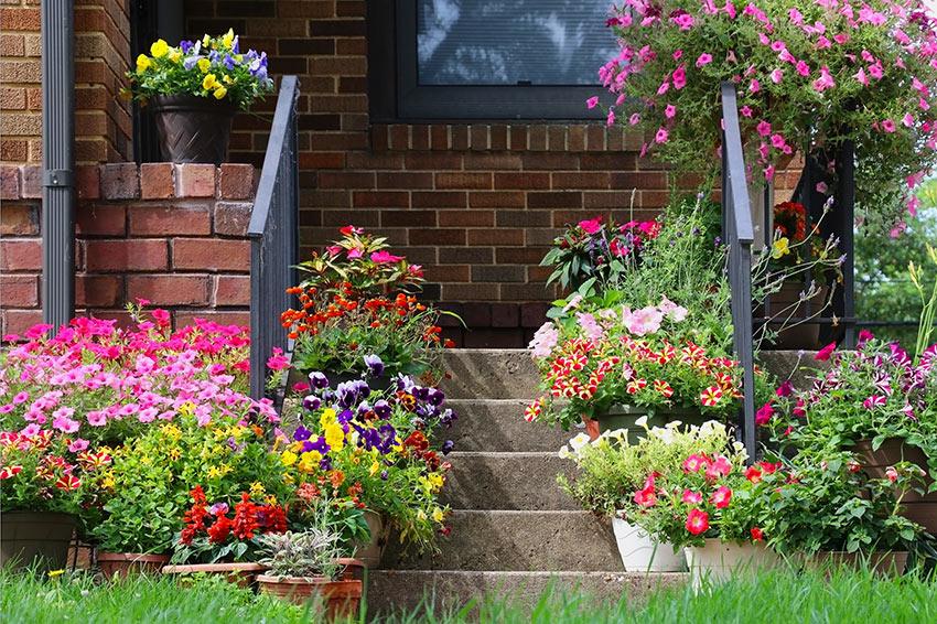 Ingresso di casa decorato con vasi di fiori.