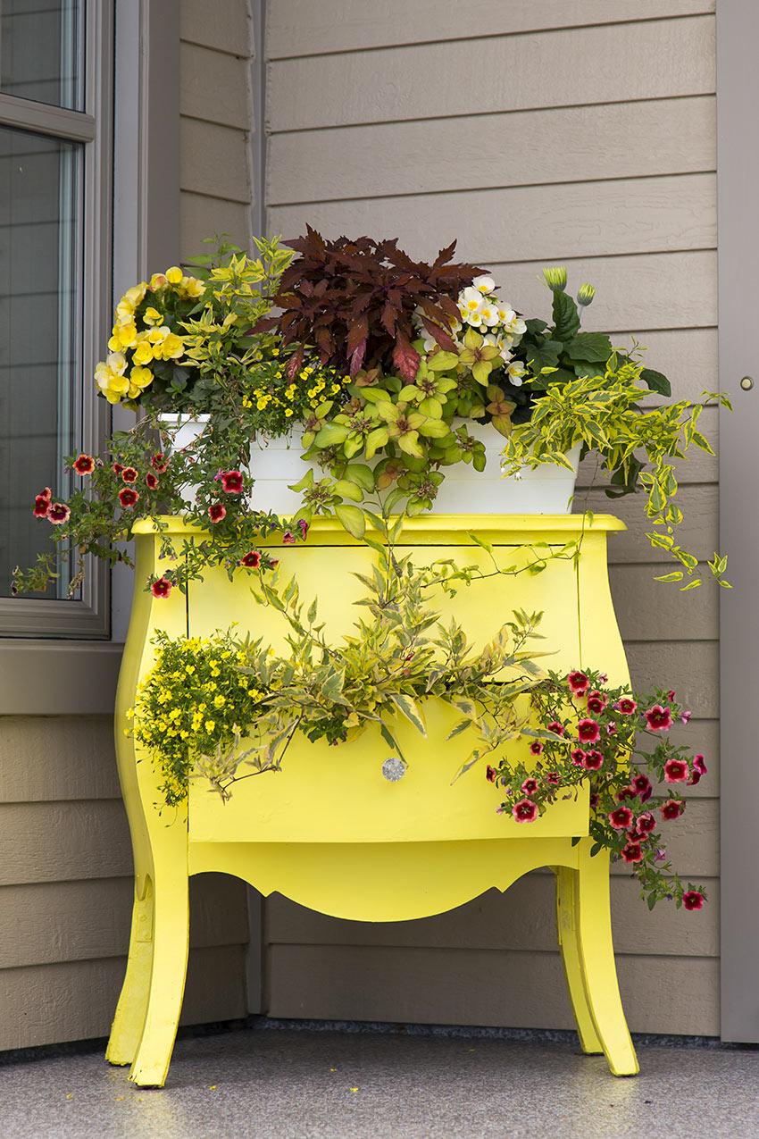 Portico di casa decorato con una vecchia cassettiera dipinta di giallo riempita di fiori.