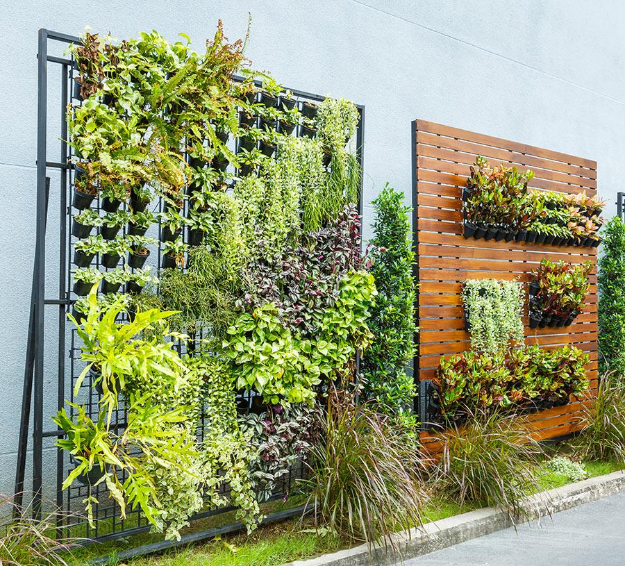Giardini verticali esterni.