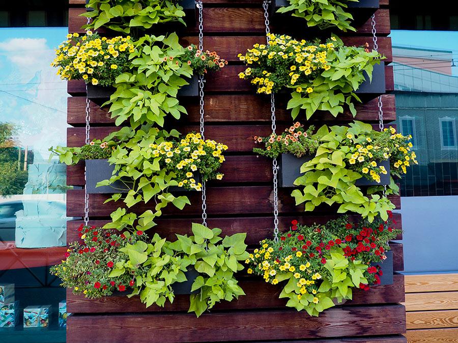 Giardino verticale in legno per esterno.