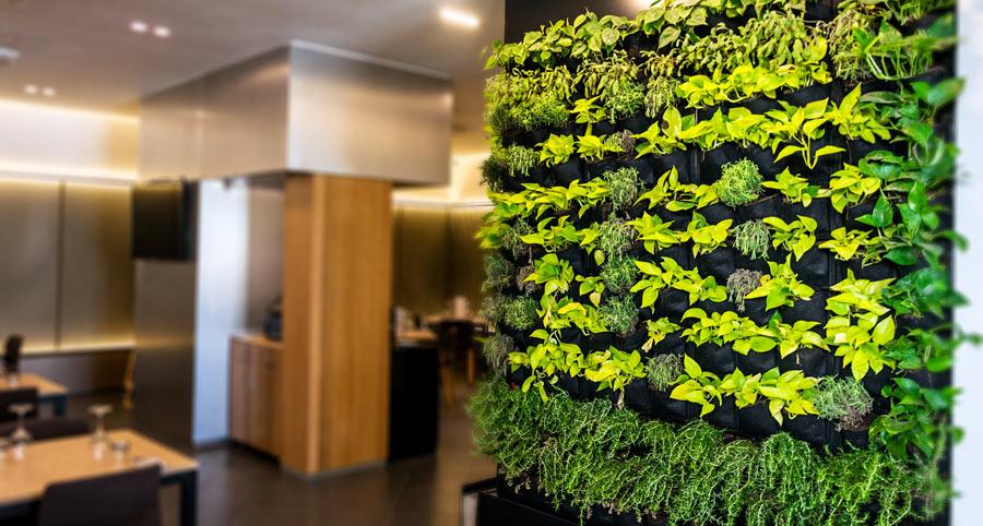 Parete verde di design in salotto.