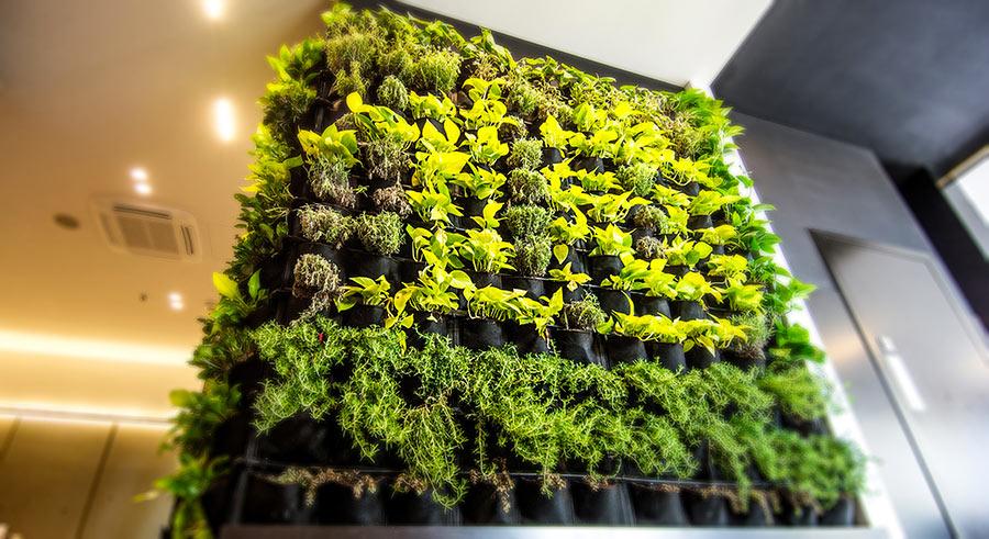 Giardino verticale per interno, una bella parete verde.