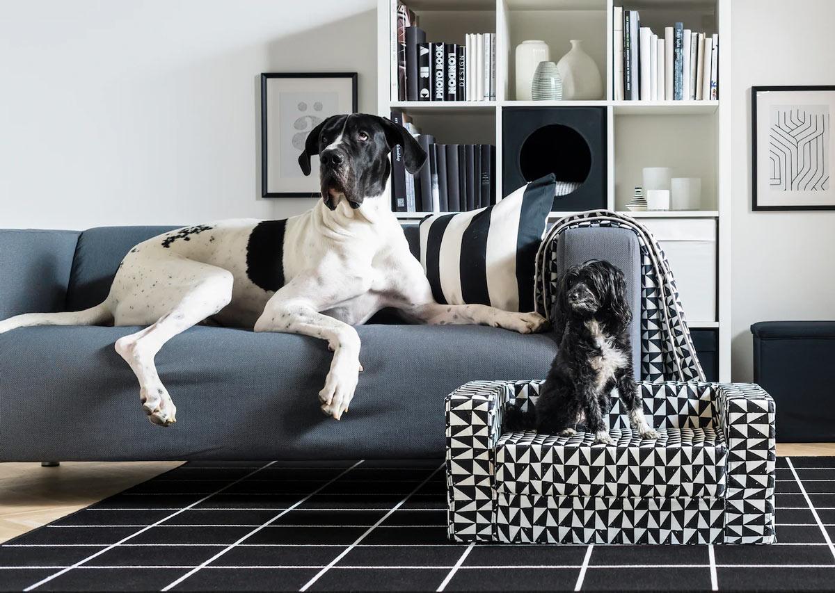 linea IKEA per cani e gatti