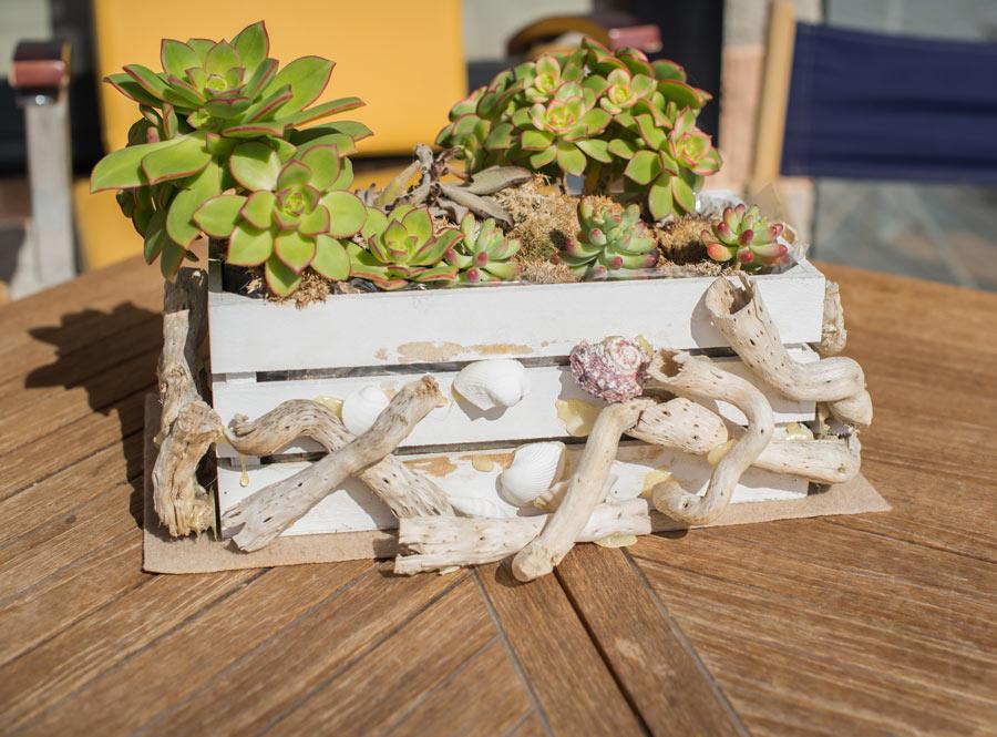 Cassetta di legno decorata con piante grasse, ideale in primavera.