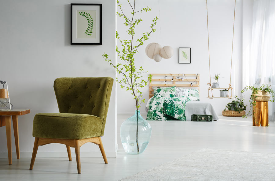 Pianta verde in una damigiana, vaso originale per decorare casa.