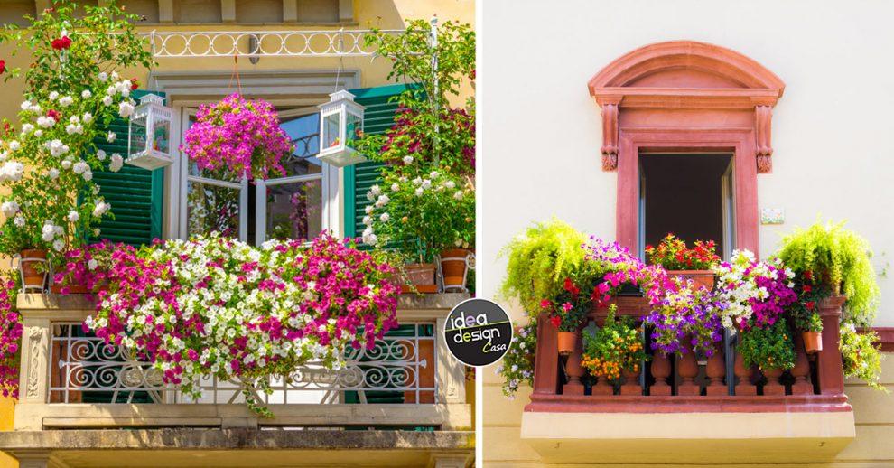 idee composizioni di fiori balcone.
