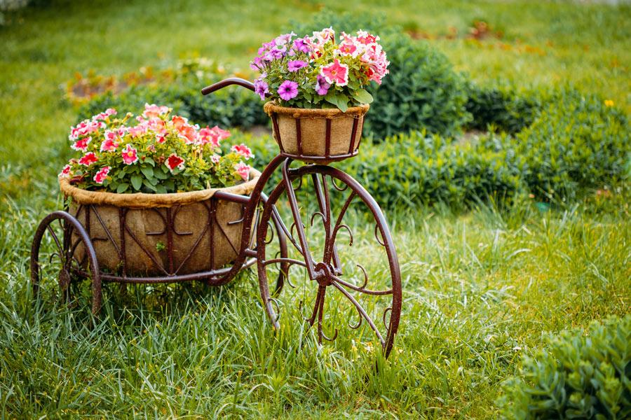 Bicicletta decorata con vasi in giardino.