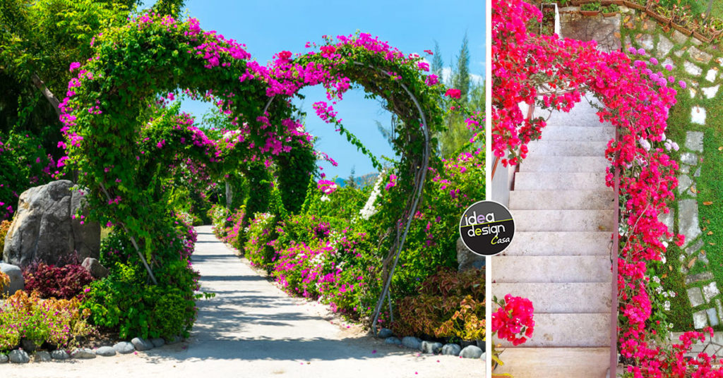 arco da giardino, idee per un esterno incantevole