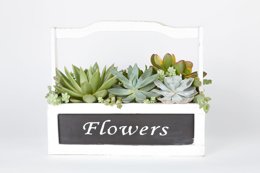 "Cassetta in legno bianca con scritta ""flowers""."