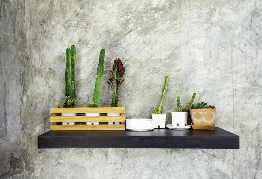 Mensola con cassetta di legno con cactus.