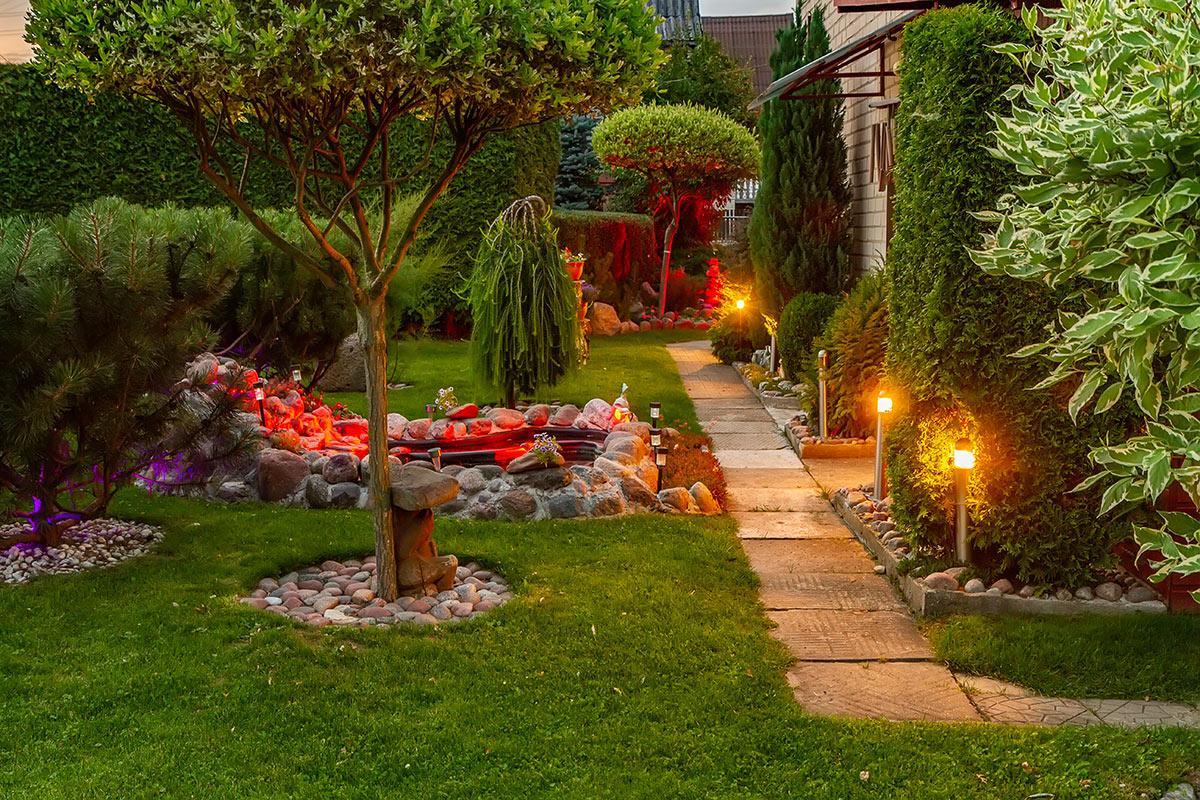 Bellissimo giardino illuminato con faretti pianti per terra.