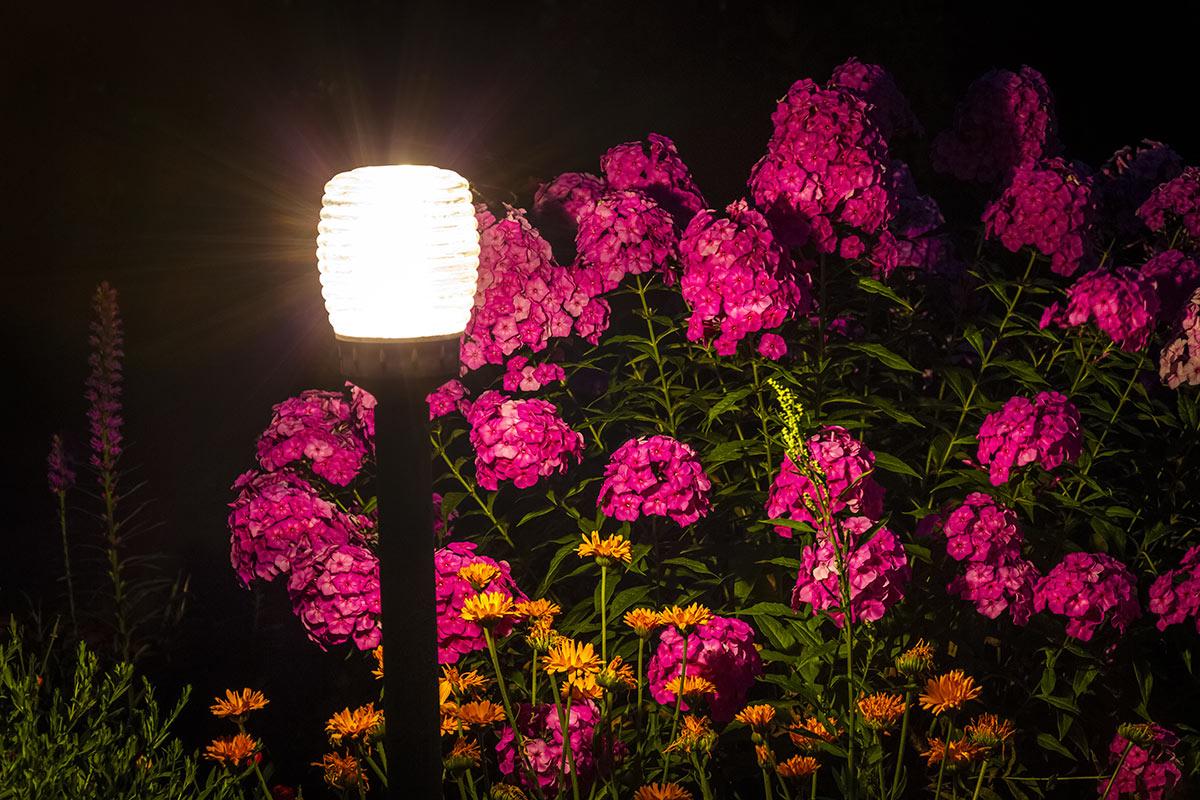 Illuminazione giardino originale.
