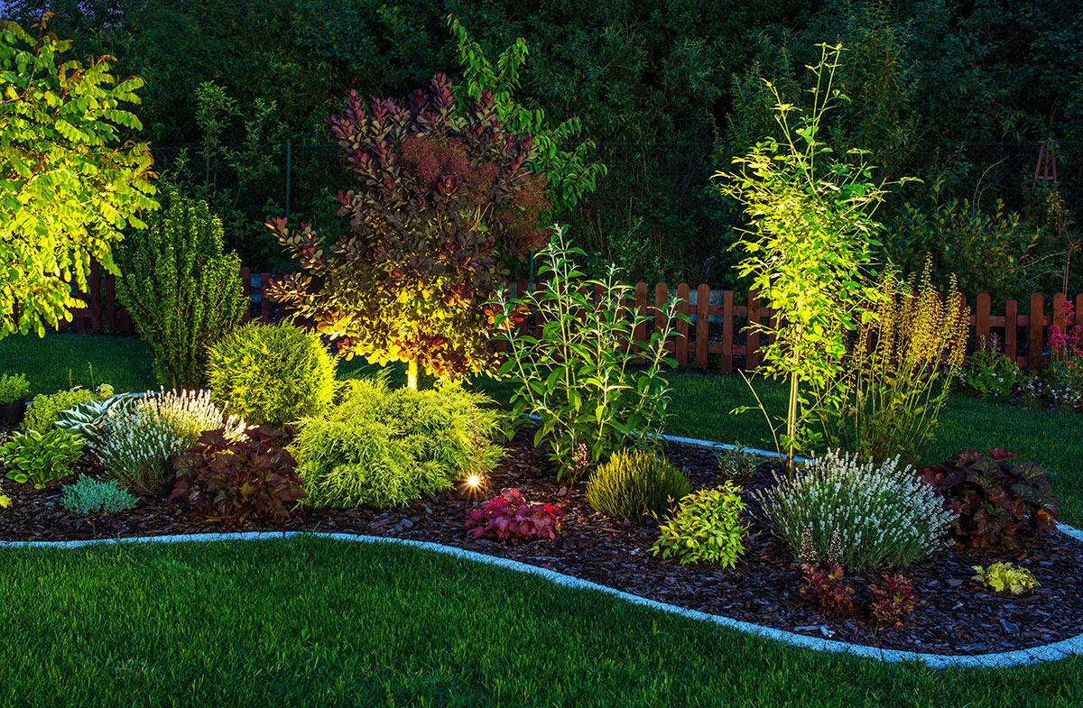 Aiuola illuminata con dei faretti in questo giardino.