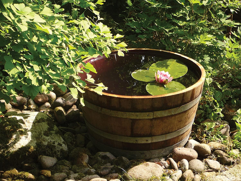 Tinozza di legno trasformato in un giardino d'acqua.