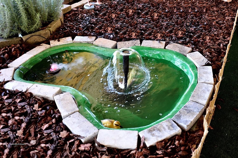 Piccolo giardino d'acqua.