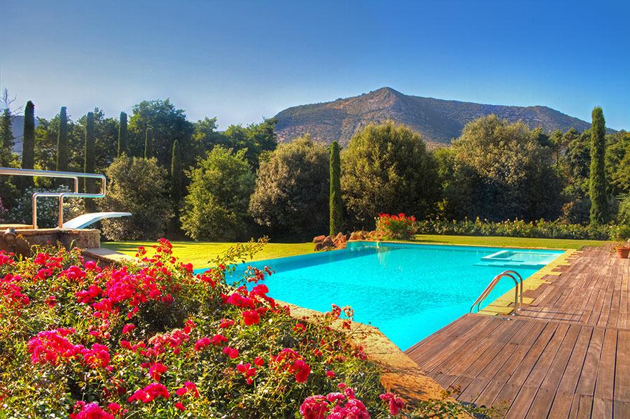 Bellissima piscina in giardino curato, fiori colorati, prato.