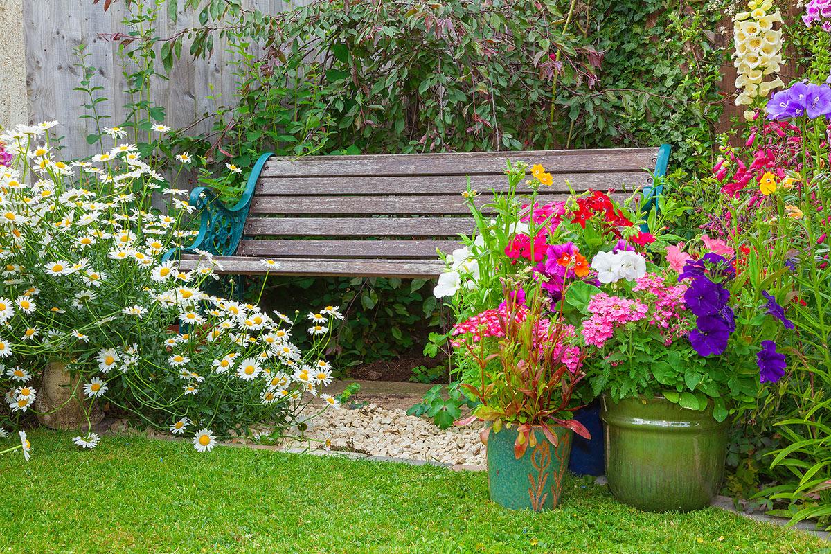 Panchina da giardino con vasi di fiori.