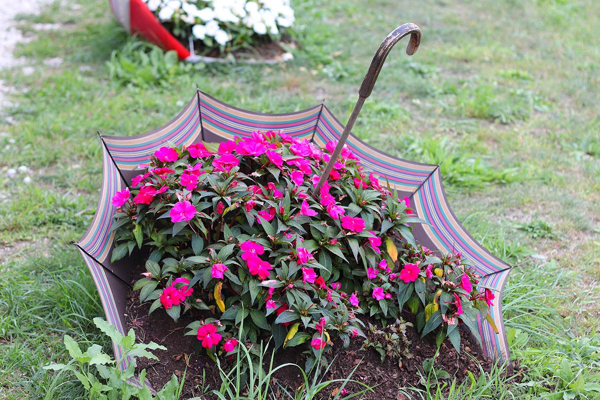 Vecchio ombrello diventa porta fiori in giardino.