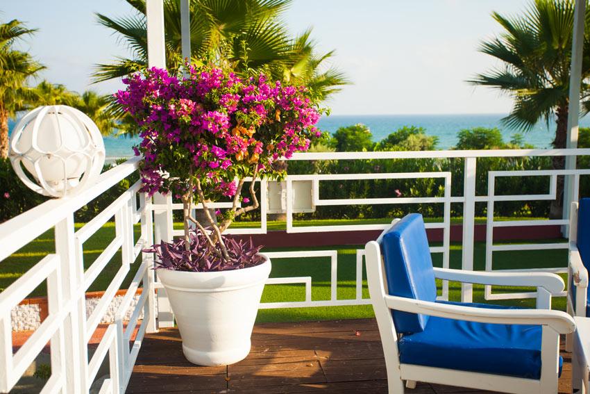Bellissimo vaso di fiori sul balcone.
