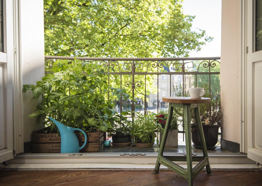 Balcone con piccolo orto.