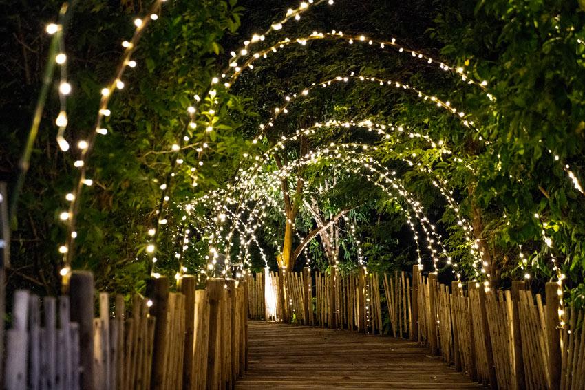 Tunnel di luci in giardino.