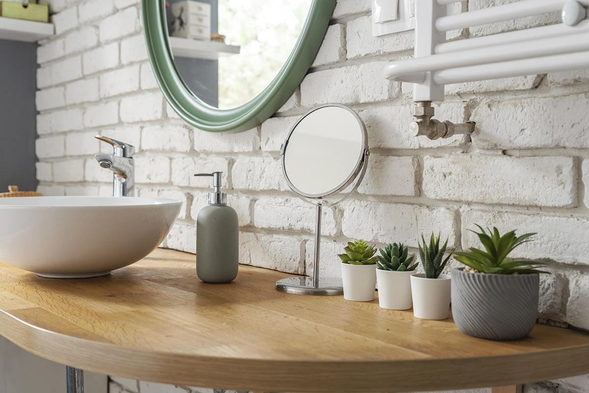 Vasi con piante grasse in bagno.