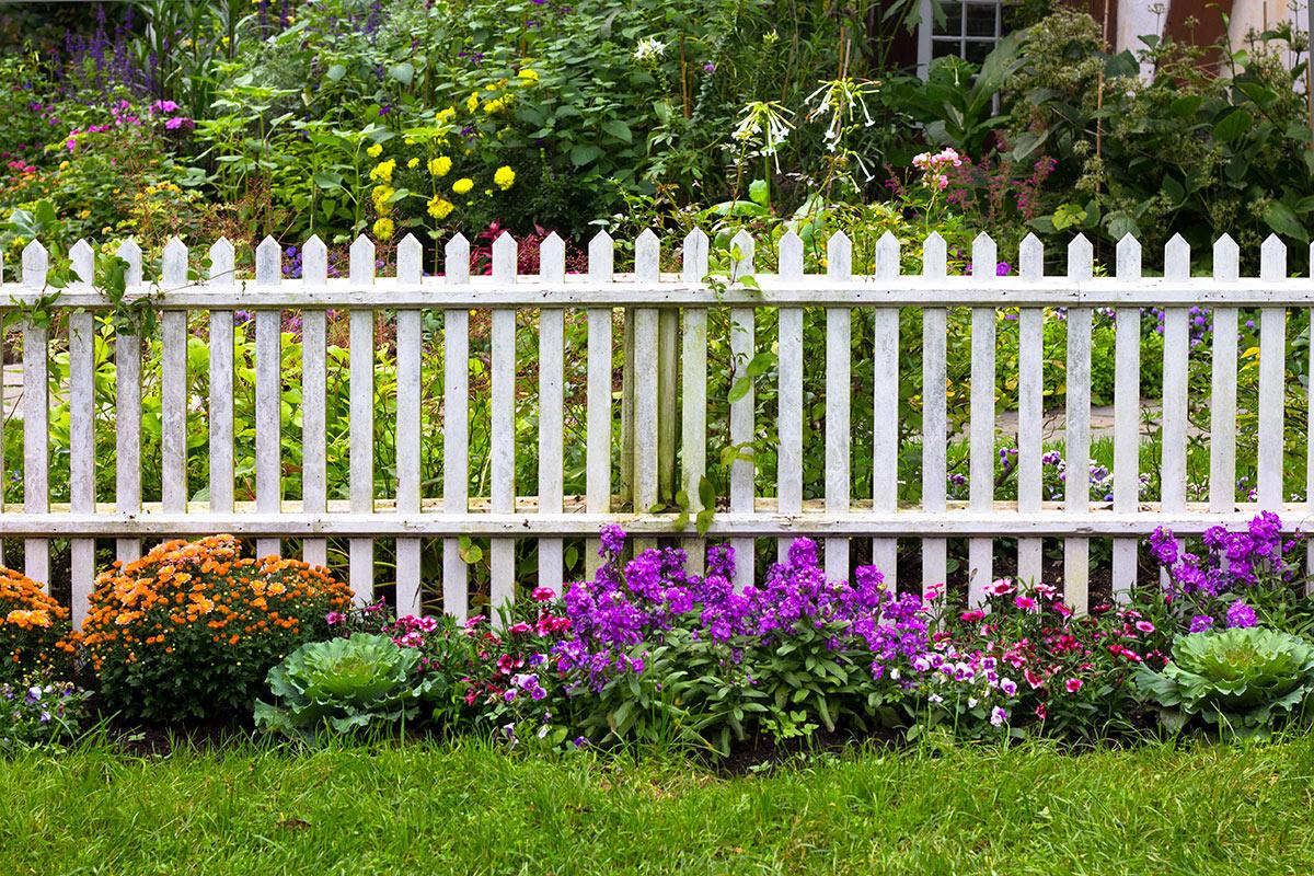 Recinto da giardino in legno bianco con fiori colorati.