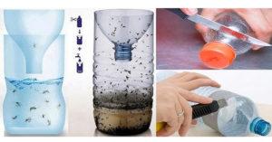 """trappola """"fai da te"""" con una bottiglia di plastica efficace contro le zanzare"""