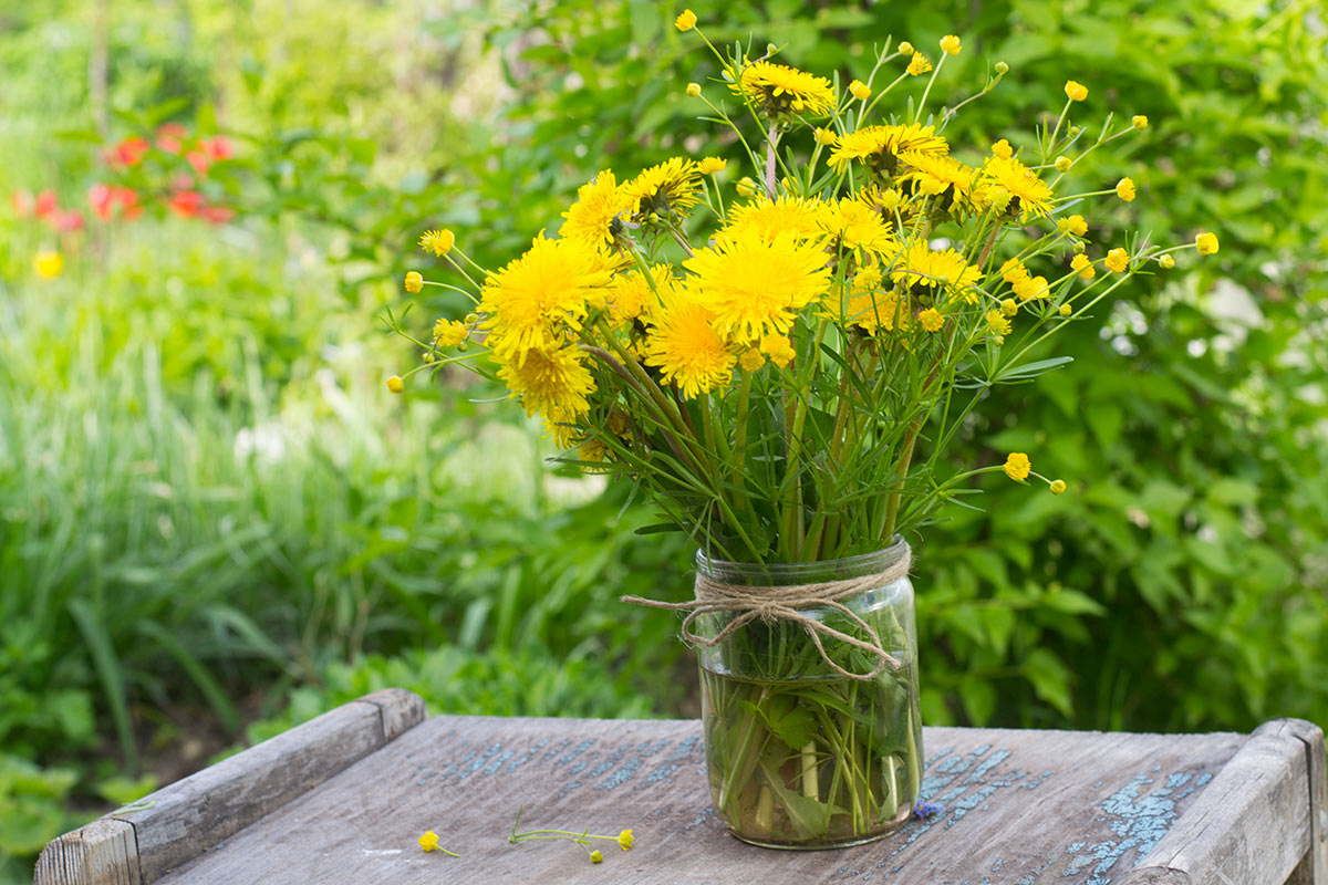 Contenitori di vetro riciclato con fiori gialli.
