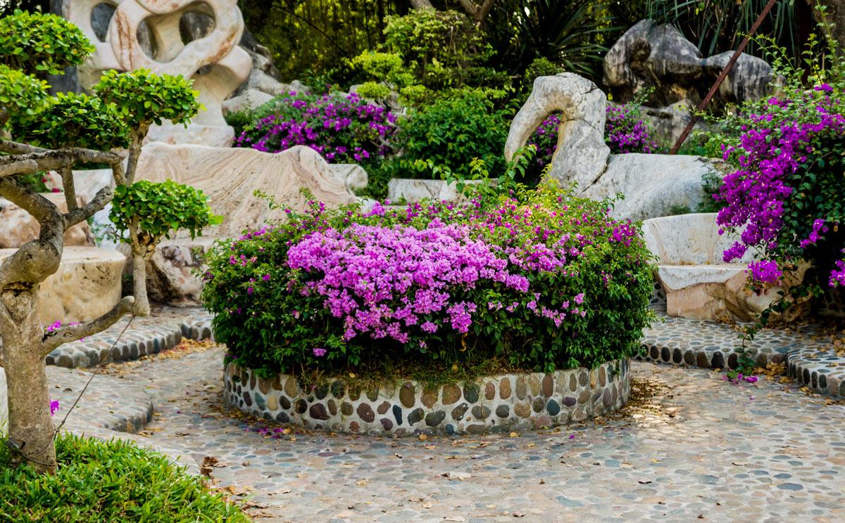 Bellissima aiuola in giardino con fiori viola.
