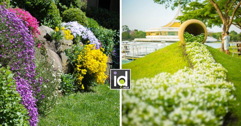 Cascata di fiori in giardino.