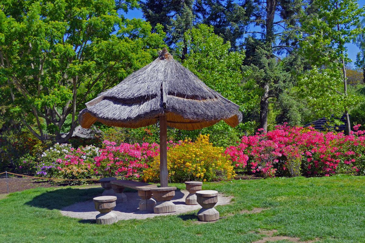 Ombrellone di paglia che crea una zona d'ombra in giardino.