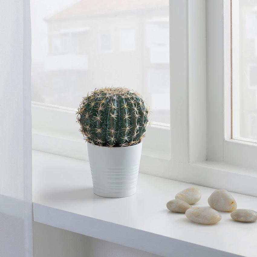 Cactus finto IKEA.
