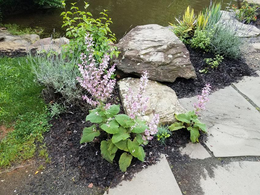Pietra naturale giardino.