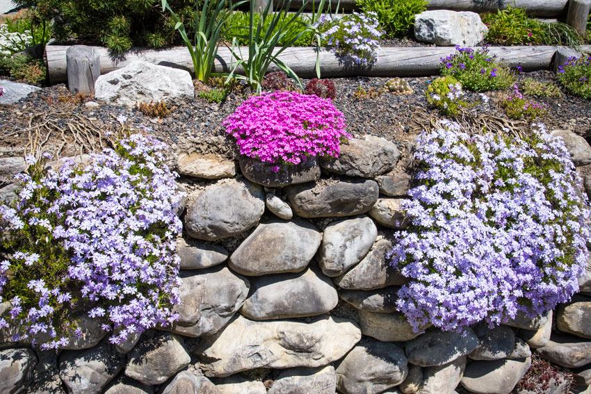 Giardino con muretto realizzato con pietre naturali.