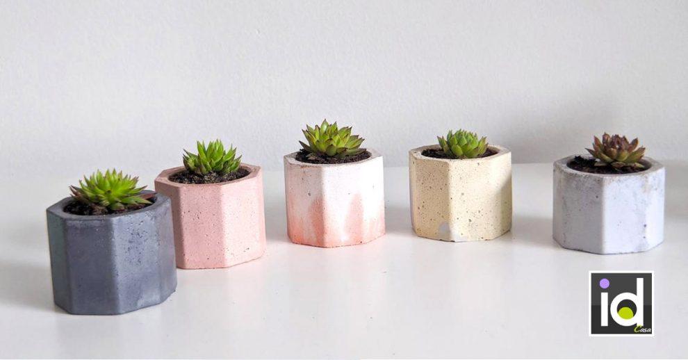 mini piante per decorare spazi piccoli in casa