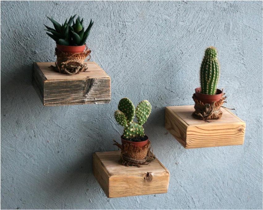 Mensole quadrate in legno grezzo con vasetti di piante grasse.